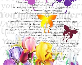 INSTANT DOWNLOAD-Romantic Collage-Wedding-Butterflies-Flowers-Irises-Floral-Handwriting Background-Printable-Digital Sheet-No.429