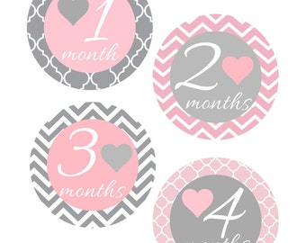 Milestone Stickers, Baby Month Stickers, Pink and Gray, , Monthly Baby Sticker, Baby Shower Gifts, Baby Month Sticker Girl, G38
