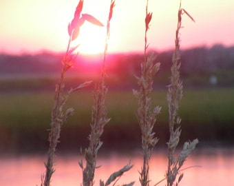 Sunset through the Sea Oats at Wrightsville Beach, NC