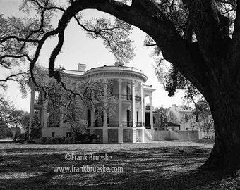 Fine Art photography, southern plantation homes Nottoway Plantation, Fine Art Print
