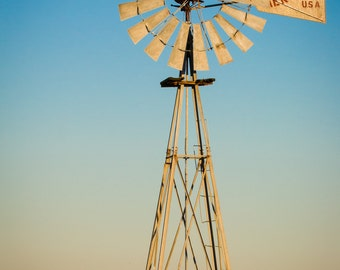 Hawk perched on a windmill in southeast Texas.