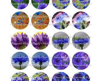 Instant Download Cornflower 18mm Circles - Digital Collage Sheet