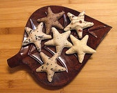 Fall Pumpkin Crow Floral Star Bowl Filler ornament Decorations