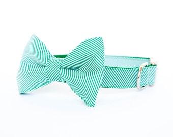 Dog Bowtie Collar - Green Pinstripe