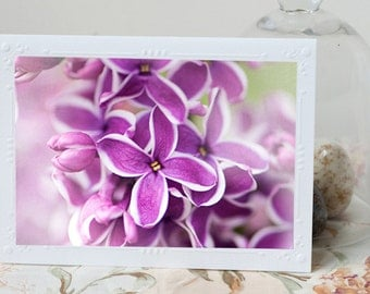 Lilac Photo Notecard - Sensation Lilac Blossom Note Card, Floral Photo Notecard, Stationery, Blank Notecard