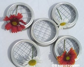 5 Mason Jar Vase Lids Frogs for Flowers in Mason Jar Vases