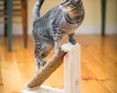 Natural Inclined Cat Scratcher with Cedar Post