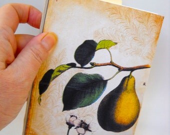 Hand Bound, Softcover, Victorian Journal, Pear and Butterfly Book, French Stitching