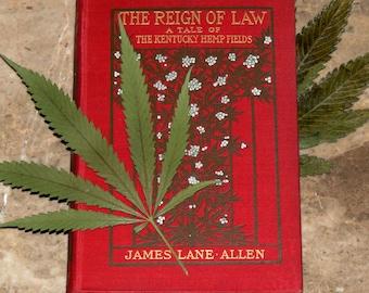 Kentucky Hemp Fields - Antique 1900 First Edition Book - Marijuana / Cannabis / Hemp Cover Design - Edwardian Era - Illustrated