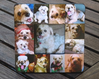 """Pet Memorial Frame, Pet Collage Picture Frame, Custom Cat Frame, Dog Frame, Personalized Pet Collage Picture Frame 8"""" x 8"""", Unique Gift"""