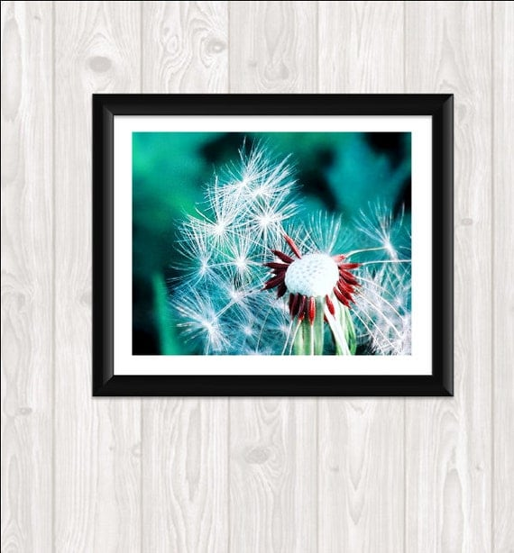 "Dandelion Macro Photography Print Your Own Fine Art  Photo Nature Photography Home Decor Wall Art  8 x 10 Mint Dandelions ""Fly Away a Wish"""