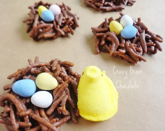 SPRING Chocolate Birds Nests (4)