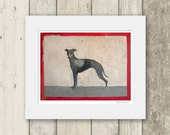 Whippet print / dog portrait / LOOK AT ME / Signed & Mounted Giclée Fine Art Print
