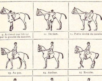 Antique French Print Dictionary Page 1920s Illustrations Horse riding Equestrian Dressage paper projects scrapbooking, collageBook page