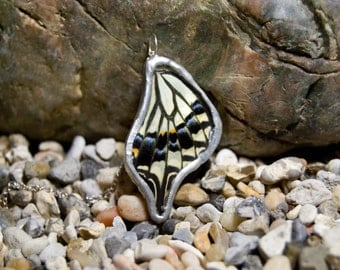 FREE SHIPPING  Real Butterfly Wing Encased in Hand Cut Glass and Soldered Pendant Necklace