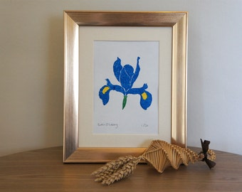 Iris - signed Gocco screen print