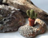 Cactus plant crocheted miniature. Potted plant. Green crochet cactus. Saguaro cactus, mexican,