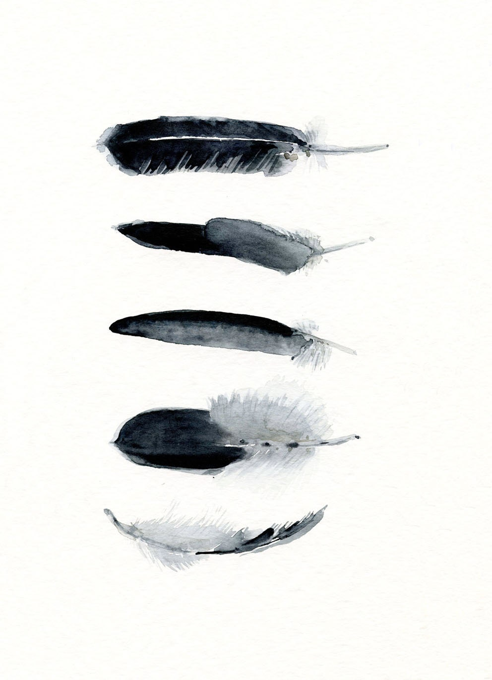 Black And White Feather Art Work 5 Feathers Art By Theclayplay