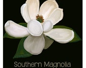 Magnolia Art - Original Art, magnolia clip art, magnolia painting. magnolia printable