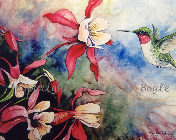 ACEO CARD HUMMINGBIRD- Limited Edtion 10, bird, nature, columbine, flowers, garden, print, Bristol, wings, feathers,