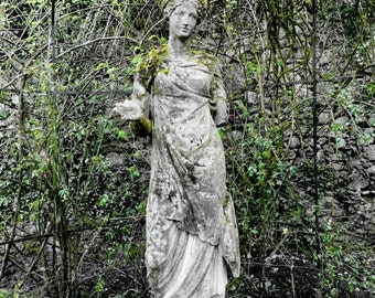 Garden Statue with Ivy, Ireland