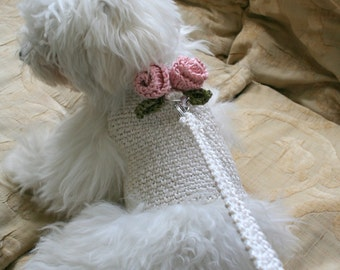 Dog harness with Matching Leash