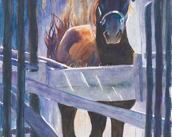 Taos Morgan Stallion WaterColour Fine Art giclee 11x22