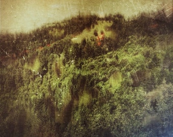 Fire on the Mountain Photography Digital Painting iPhonography Forest Green Home Decor Dark Art