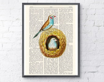 Summer Sale Birds in their nest Print on Vintage Book Perfect gift altered art dictionary page illustration book print art ANI048