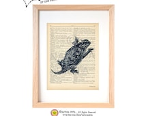 Texas horned lizard dictionary print-Lizard on book page-Lizard art print-Natural History print-Upcycled Dictionary art- by NATURA PICTA