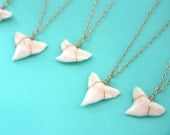 Genuine Shark Tooth Necklace, Gold Shark Tooth Jewelry, Real Shark Tooth Pendant, Delicate Gold Necklace, Real Shark Tooth Necklace