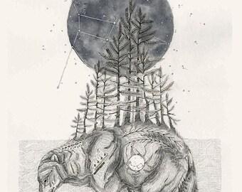 Constellation art print - Ursa Major, the great bear, 11x14