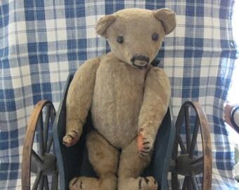 Vintage Teddy  Bear American