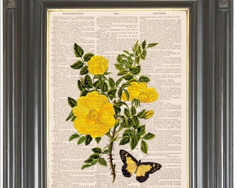 COUPON SALE Yellow rose butterfly wall decor Dictionary art print on antique dictionary, music, or art paper Digital art  Item No 727