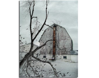 Old Barn, Bird Filled Branches, Nature, Old Architecture, Countryscape, Rural Art, Winter Scene - Old White Barn