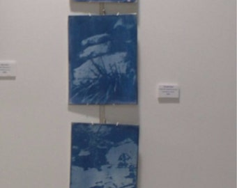ceramic/ cyanotype/ photograph/Tranquility/outdoor/ wall hanging