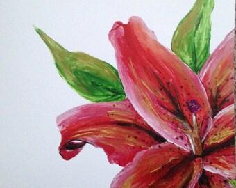 Lily 8x8 print