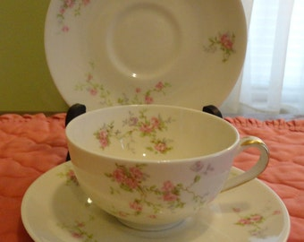 Theodore HAVILAND - Pink Spray - CUP & SAUCER - New York