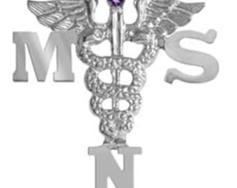 Masters of Science in Nursing MSN Pin in Silver