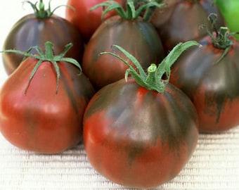 Black Pear Tomato seeds