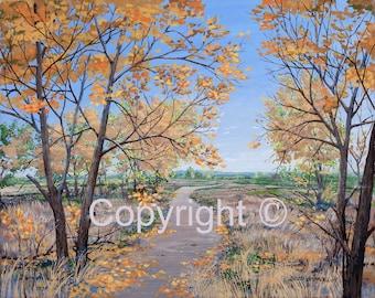 Fall Cottonwood Landscape