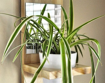 Wall Planter with Mirror