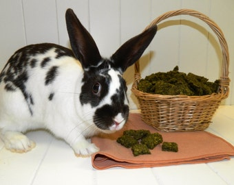 Yummy Bunny Snax.  A tasty, all-natural treat for your rabbits.