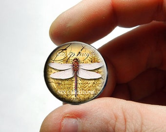 Glass Cabochon - Dragonfly D2 - for Jewelry and Pendant Making