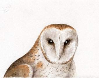 A Window into Your Soul - Original Watercolor Owl Painting
