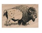 Rubber stamp buffalo bison  animal stamping supplies    scrapbooking supplies 10530