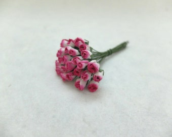 25 5mm mulberry white hot pink rose buds
