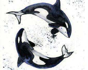Orca Whales Watercolor Print - Nautical Art - Ocean Decor - Whale Print - Whale Watercolor - Sizes 5 x 7, 8 x 10, and 11 x 14