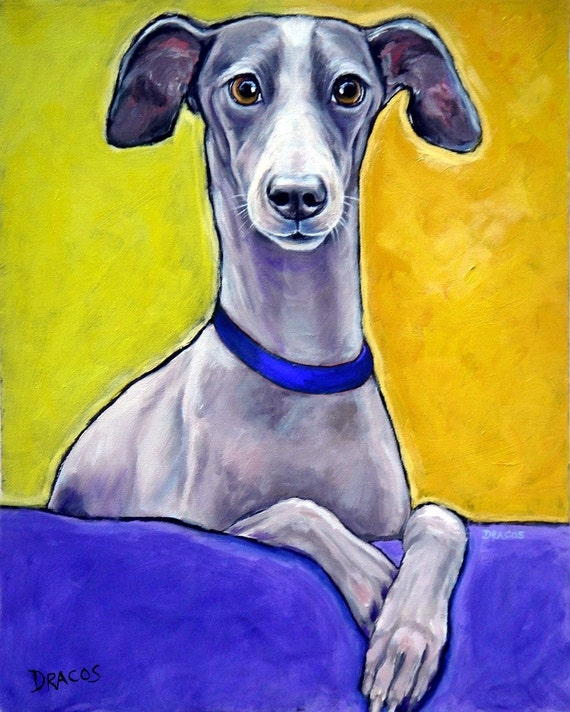 Italian Greyhound Dog Art Clearance 8x10 Print Of By
