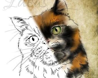 Cat Digital Stamp Digital Download | Persian Cat | Animal Line Art Clipart | Paper Crafts, Cards & Scrapbooking Supply | Cat Art | Cat Craft